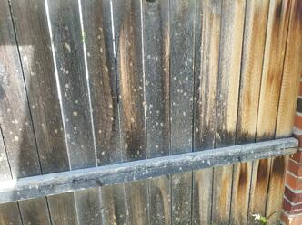 hail-damage-051818-3-fence